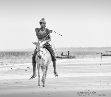 Donkey Ride, Zanzibar - B&W People Fine Art Series